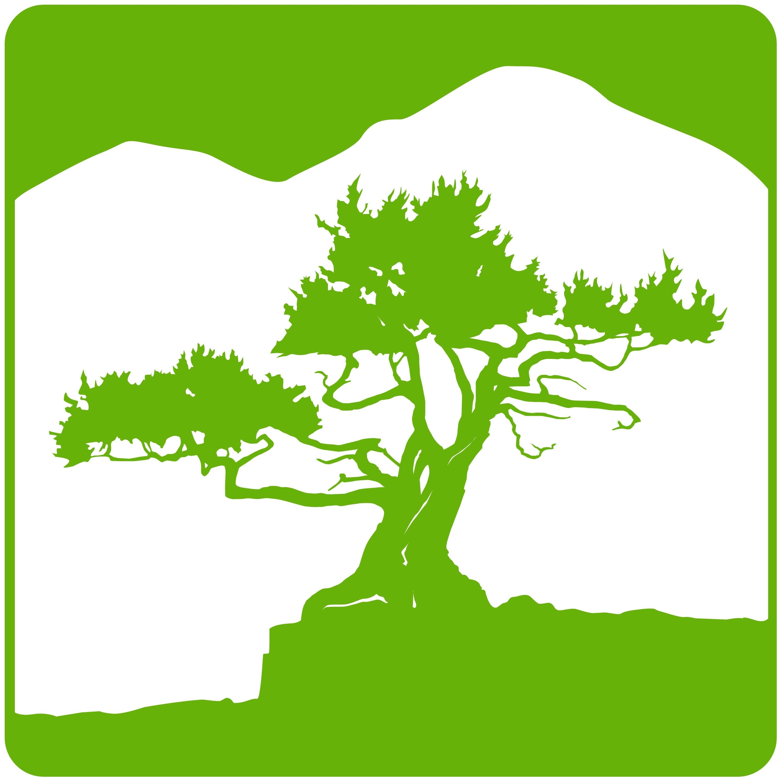 00053fc4eec Missouri Nature Art by MissouriNatureArt on Etsy