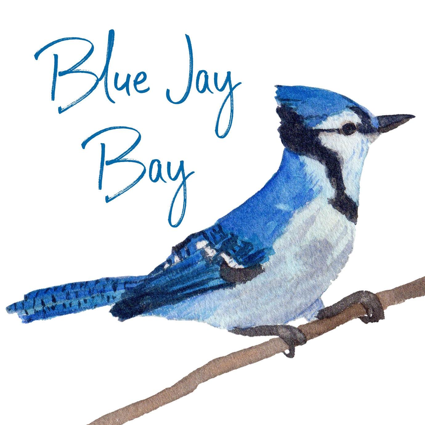BlueJayBay