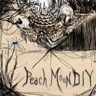 PeachMoonDIY