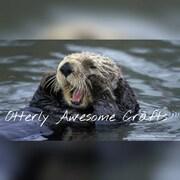 OtterlyAwesomeCrafts