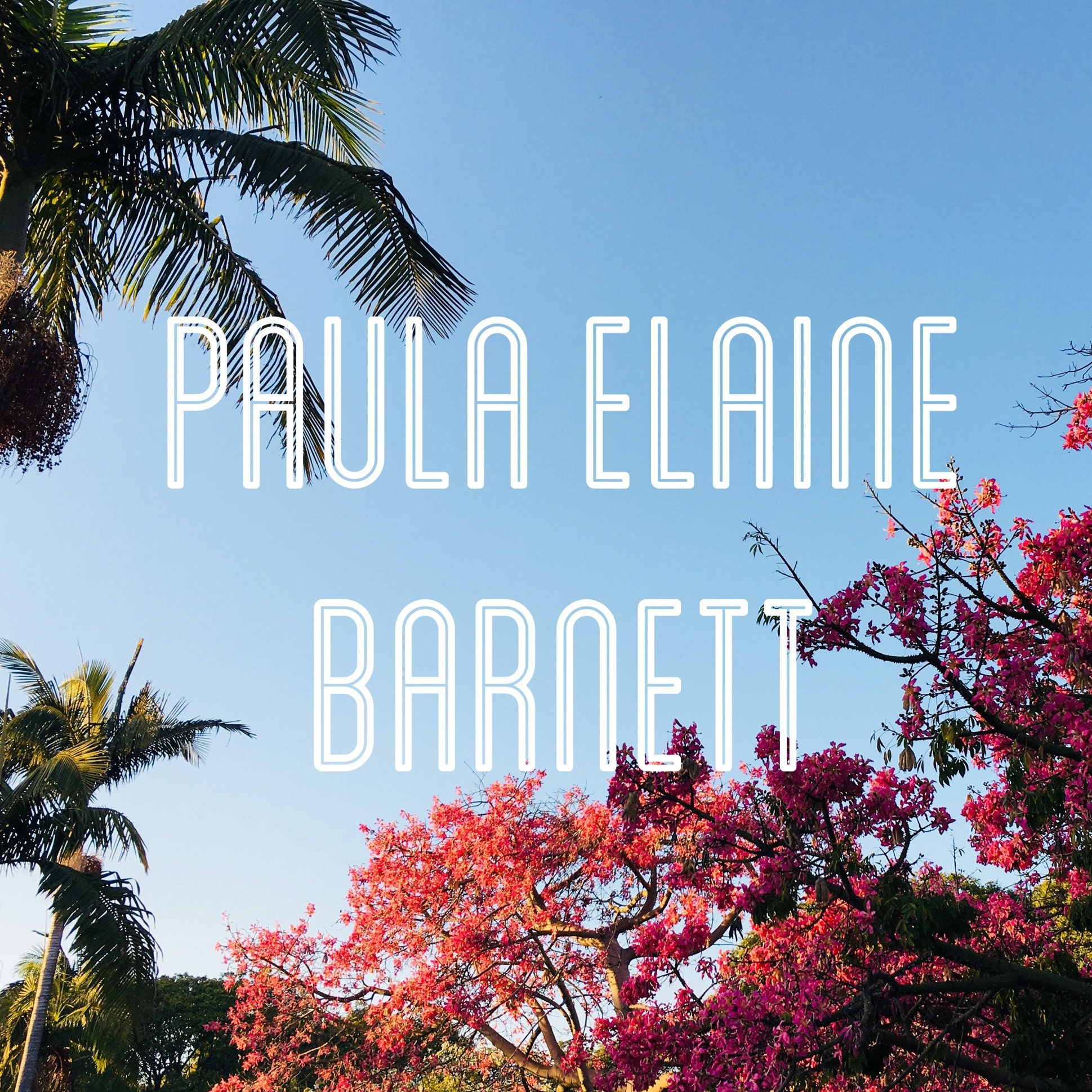 PaulaElaineBarnett