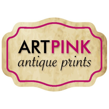 drawings paintings European antique vintage prints reproductions Animal art Tiger illustration posters William Blake FINE ART PRINT