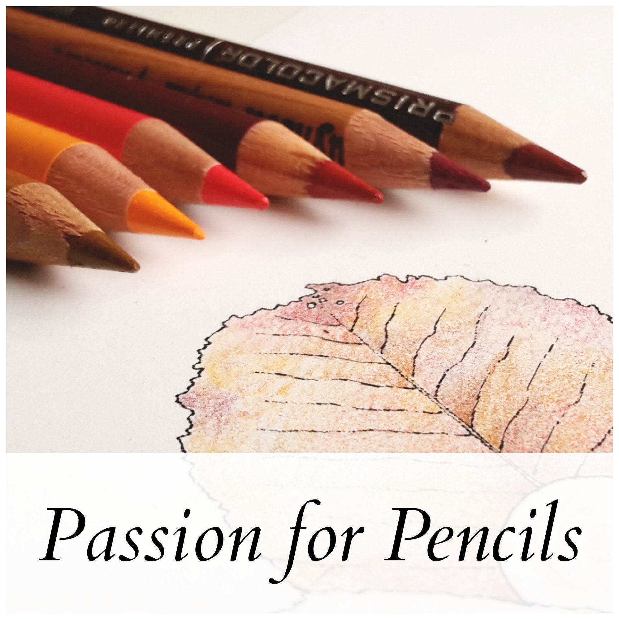 Passion For Pencils By HennydeSnoo On Etsy