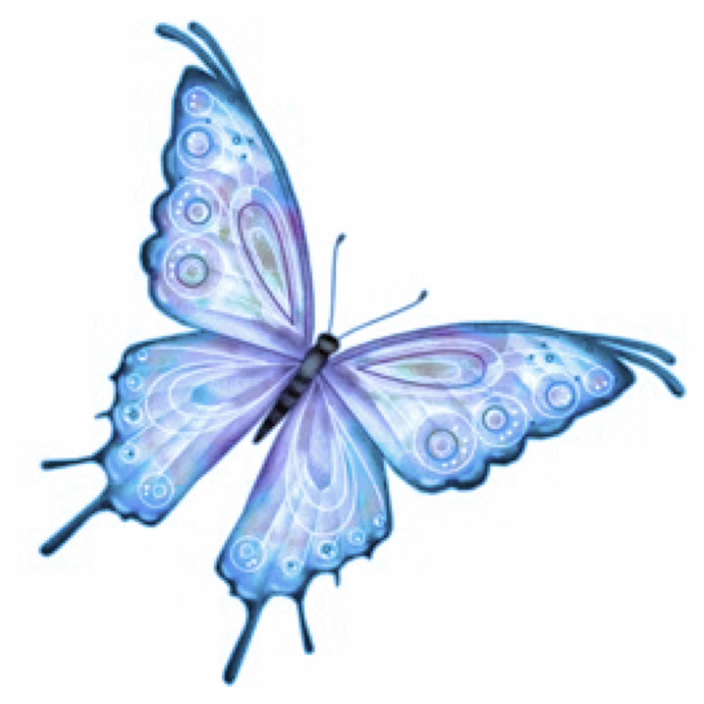 Счастья радости, картинки для детей бабочка анимация