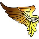 WingsPilotShop