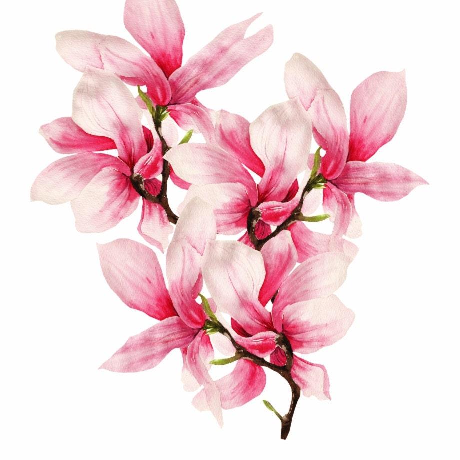 Magnolia Fabric-HEFLEY-Fabric by the Yard-Medallion Pattern-Bedding-Drapery-Upholstery-Pillows-Floor Cushions-Headboards-Custom Orders