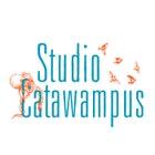 StudioCatawampus