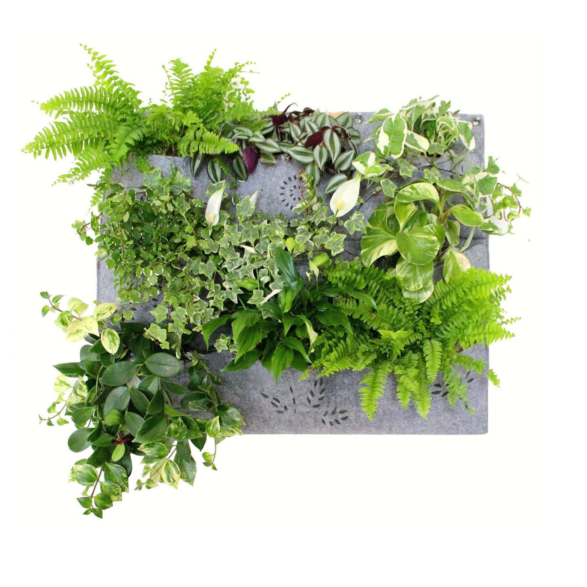 Wandbehang 12 Taschen Garten Pflanztasche Horizontale Outdoor Pflanzer Deko