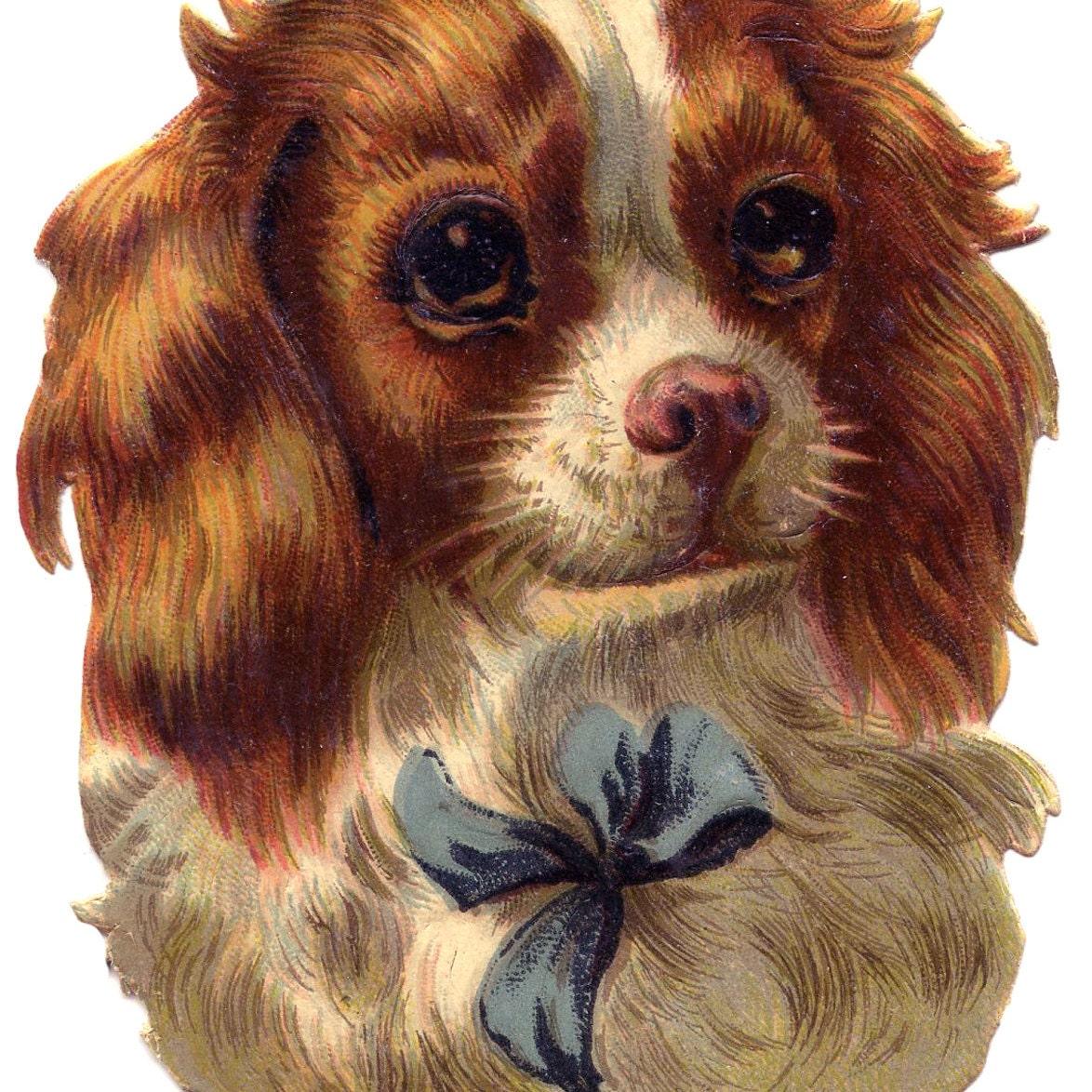 Открытки с изображением собак, любим скорбим