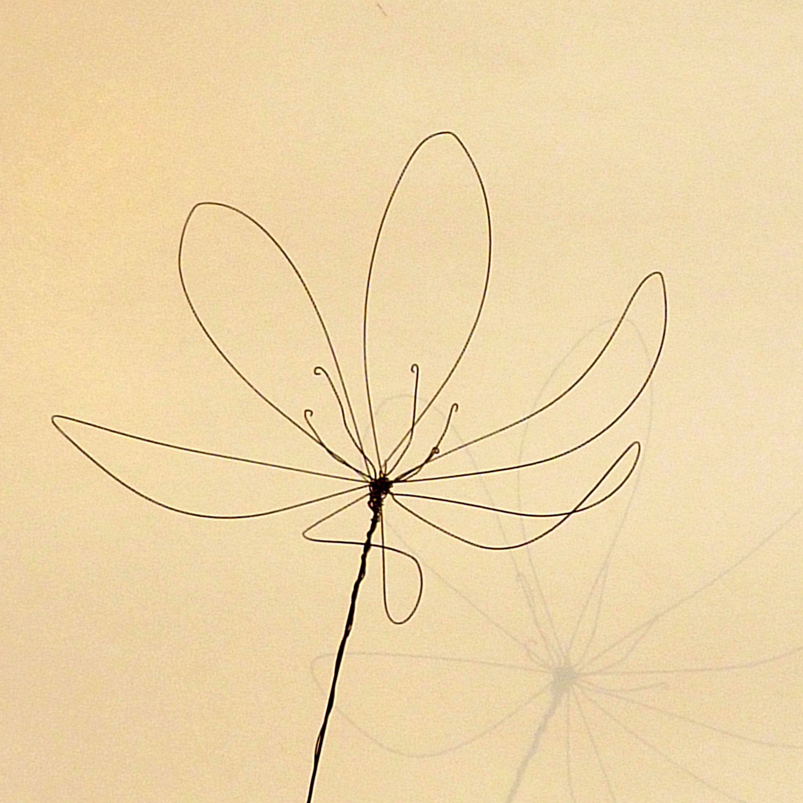 sculpture wire crab decoration wall wire art silhouette   Etsy