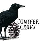 ConiferCrow
