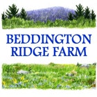 BeddingtonRidgeFarm