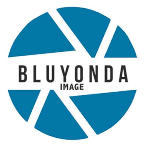 f45cc7104b1 Bluyonda Image Photography Art Silk Scarves Australia by Bluyonda