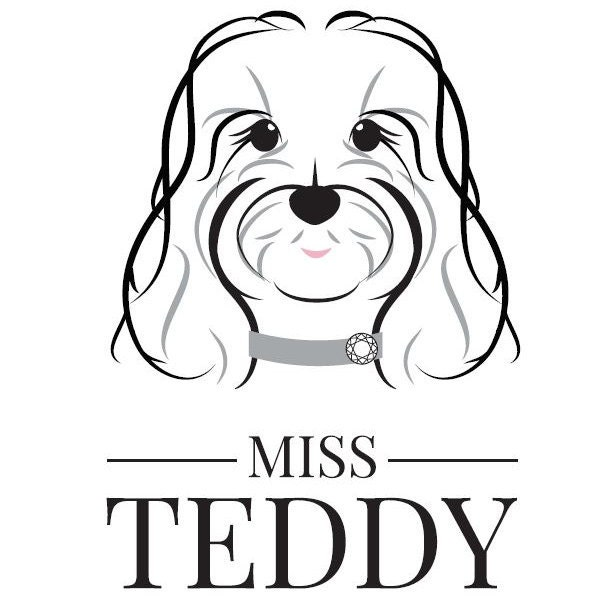 A Range Of Luxury Dog Clothing And Accessories By Missteddyuk