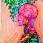 HallucinogeniusVMJP