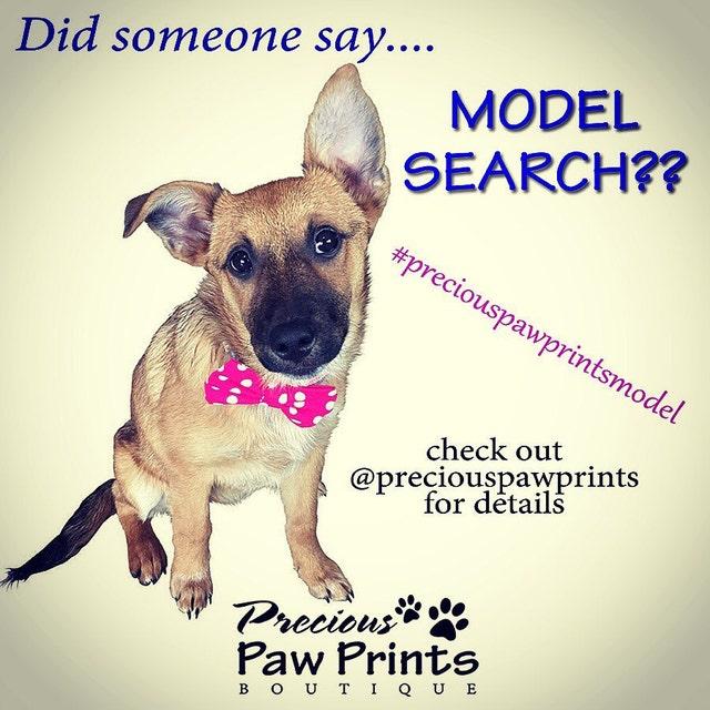 f7370c65b651 Precious Paw Prints Boutique by PreciousPawPrints on Etsy
