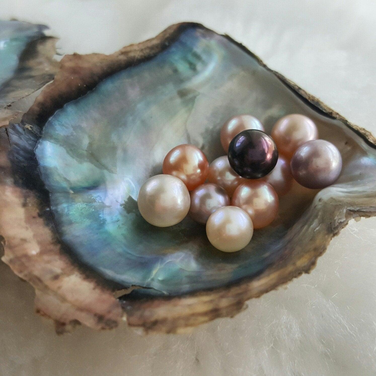 Pearl in Oyster Dream Interpretation