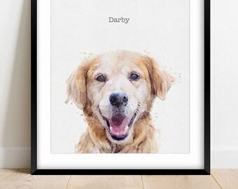 Pet & Family Portraits