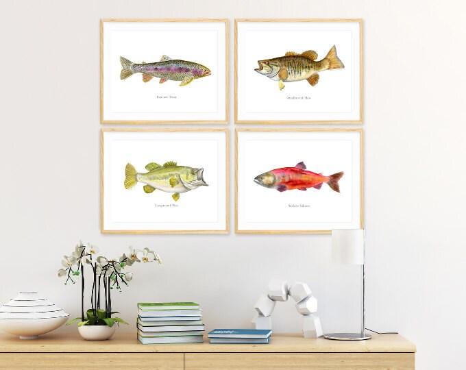 Fish, Ocean & Arctic
