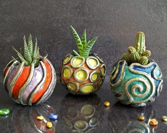 Planters and Terrariums