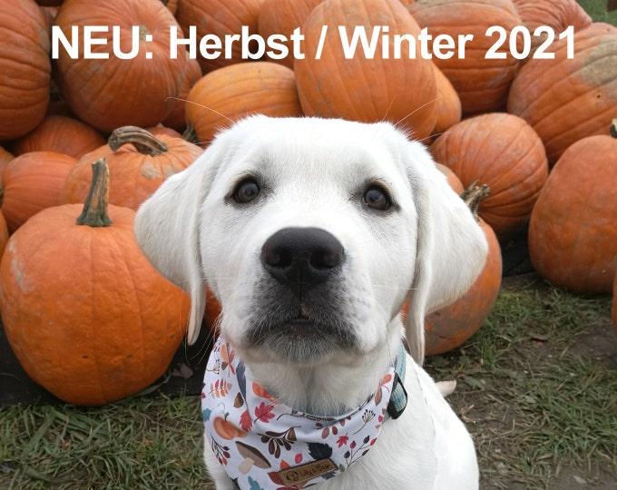 NEU: HERBST WINTER 2021