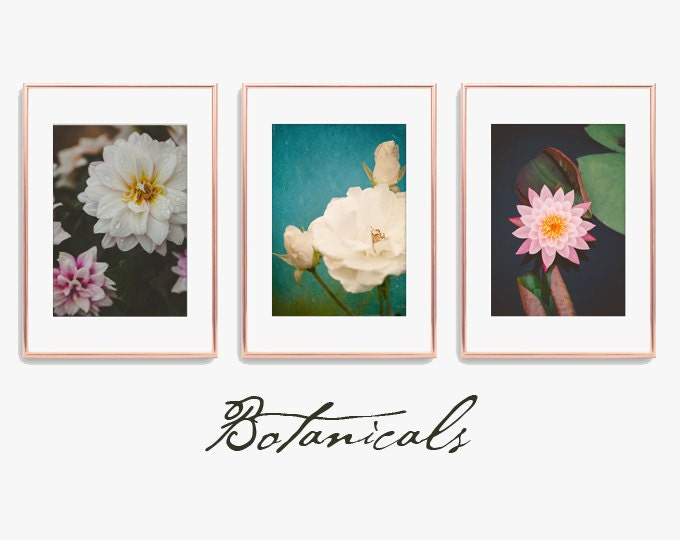 Flower Art | Botanical