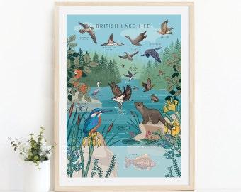 Nature Guides Prints