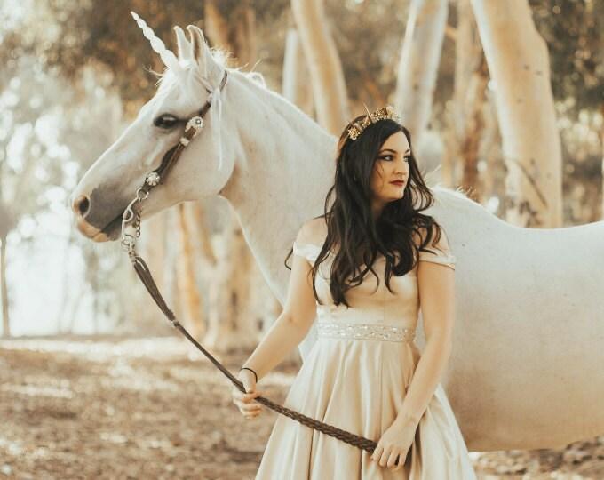 Horse Unicorn Horns
