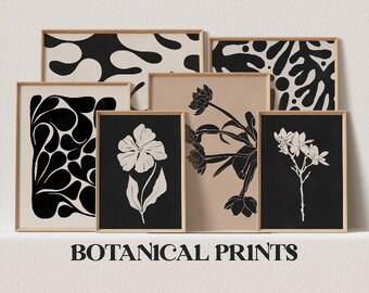 [ botanical ]