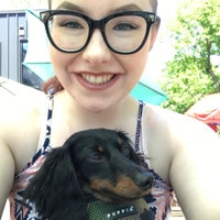 Profile picture of DachshundDazzle