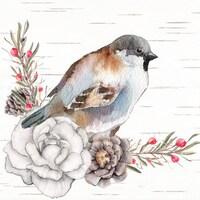 BirdsandBirchShop